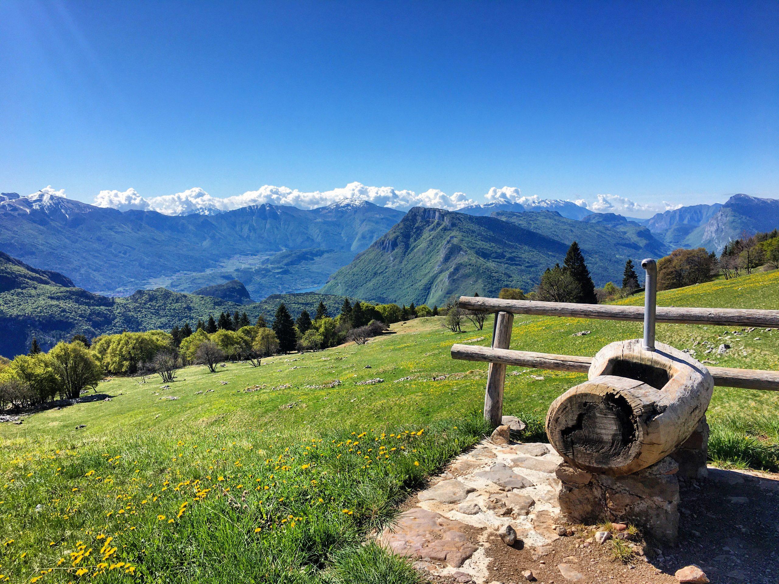 Ristorante Rifugio Alpenrose - Sala da Pranzo